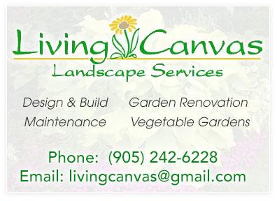 Living-Canvas-Advert
